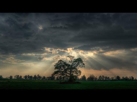 Природа hd. Психоделика. Музыка. Psychodelic beauty of nature. Vessel - Jon Hopkins