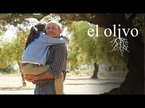 El Olivo - la nueva pel�cula de la directora Ic�ar Bolla�n
