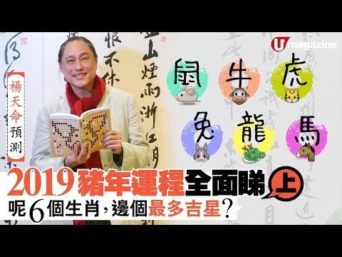 【#香港地】楊天命預測 2019 豬年運程:呢 6 個生肖,邊個最多吉星?1/3