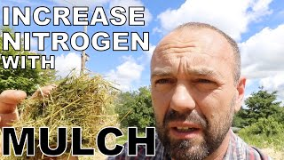 Permaculture gardening: Increase nitrogen in soil with mulch