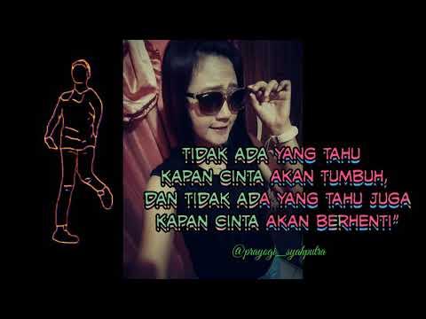 Quotes Kata Mutiara Cinta Story Wa Youtube