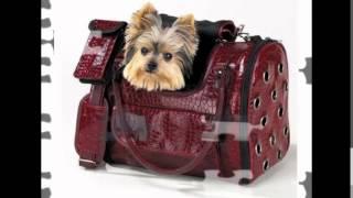 недорогие сумки переноски для собак