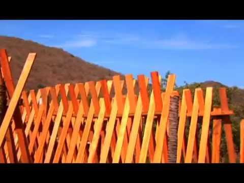 Madera de coco palma de coco para techos o terrazas for Techos en madera para terrazas