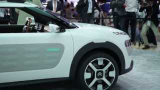 Citroen Cactus Concept 2013 Videos