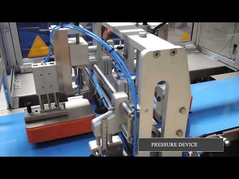 Индивидуальная упаковка продукции в флоу пак на упаковочной линии EURO 600 TR