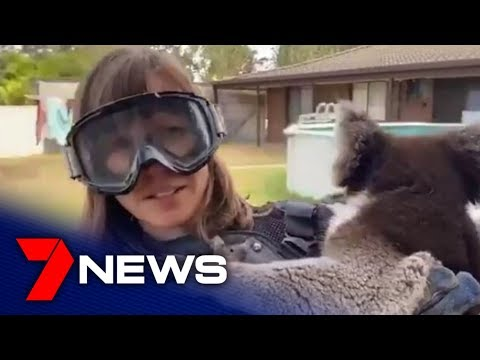 Andy Woods - Reported Gets Punked As She Does A Drop Bear Story