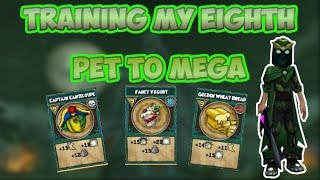Wizard101: Training My Eighth Pet To Mega!