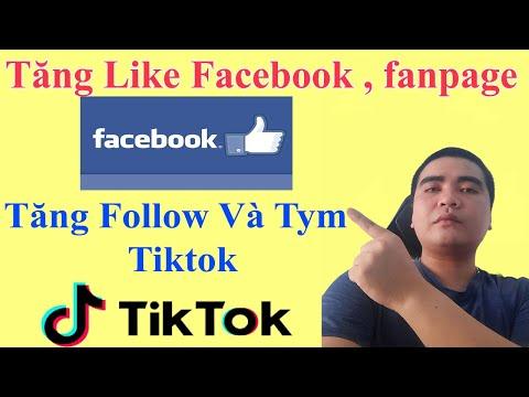 Tăng Follow Tiktok và Fanpage Facebook mới nhất || Videos hướng dẫn chi tiết | Hướng dẫn hack thú vị 1