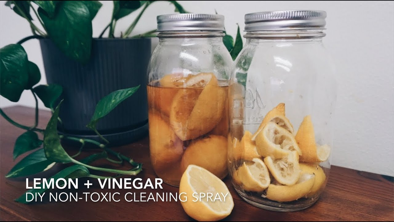 Lemon and Vinegar DIY Non-Toxic Cleaning Spray — Old World New