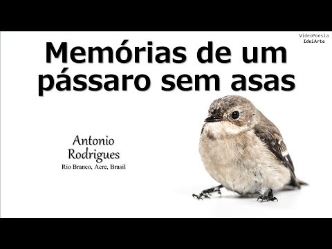 memórias-de-um-pássaro-sem-asas-(reedição-2019)-–-antonio-rodrigues-(videopoesia-ideiarte)