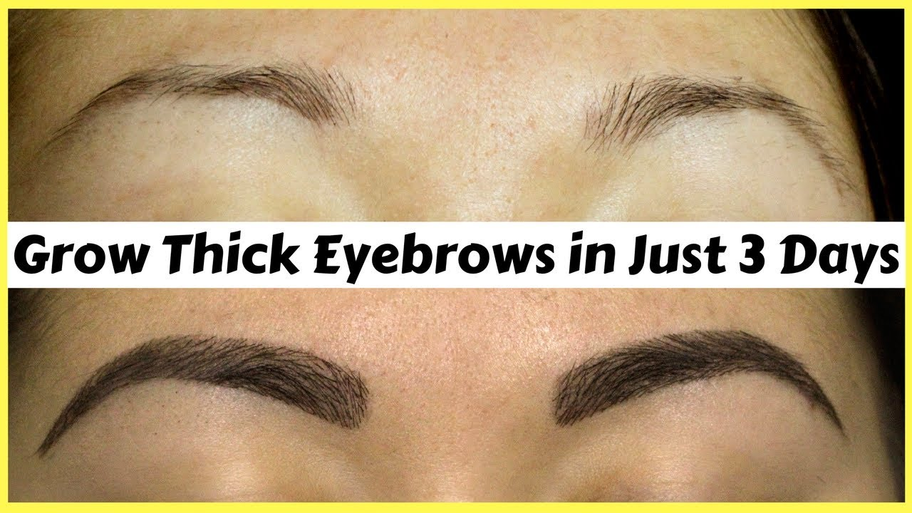 How To Grow Your Eyebrows Thick Strong In Just 3 Days Natural