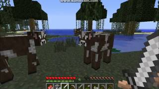 Minecraft ep 3: Shelter and lag ftw