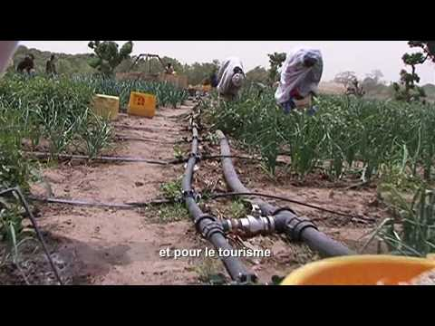 IDEV: Access to Potable Water - A Human Right