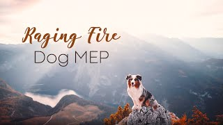 RAGING FIRE  [ Full Dog MEP ]