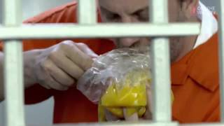 Как выжить в тюрьме (Кузьма)