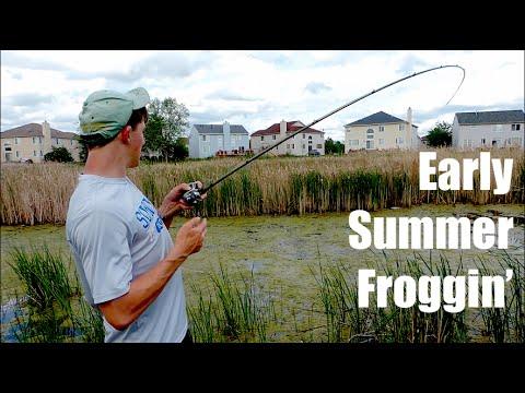 Post Spawn Frog Bass Fishing (Frog blow-ups)