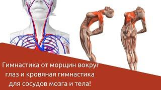 Гимнастика от морщин вокруг глаз и кровяная гимнастика для сосудов мозга и тела!