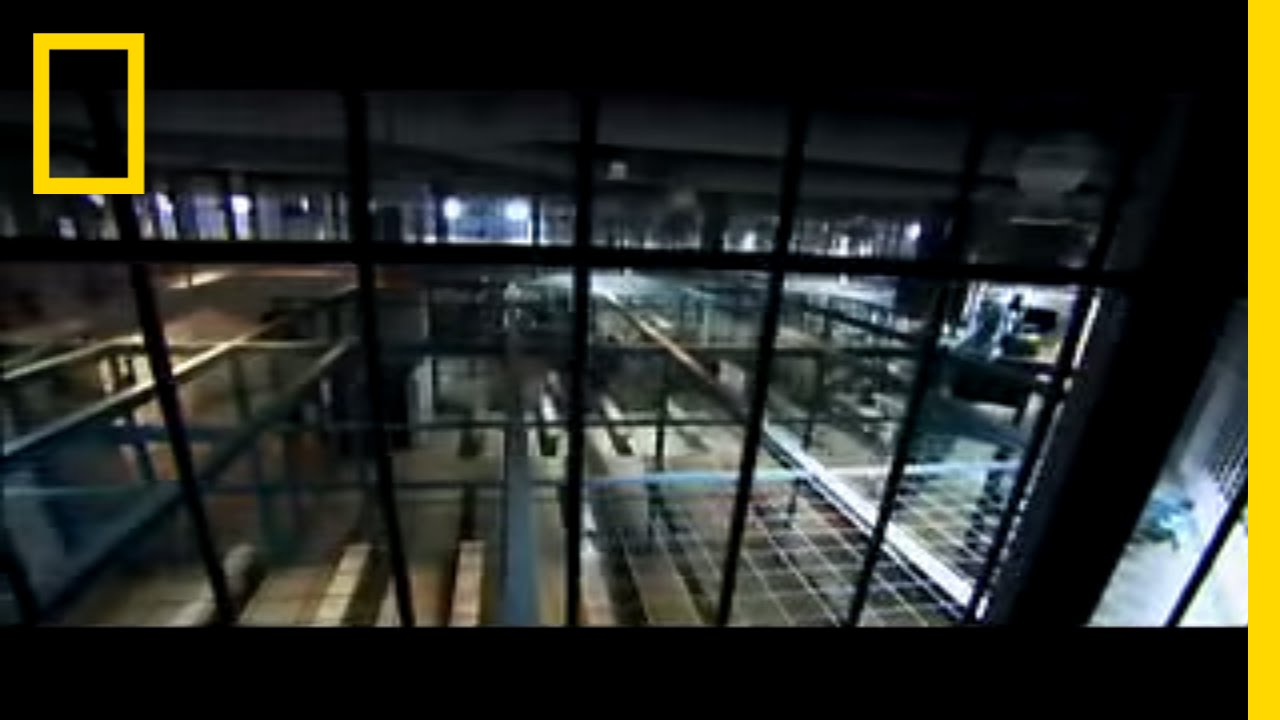 Surviving Prison National Geographic Youtube