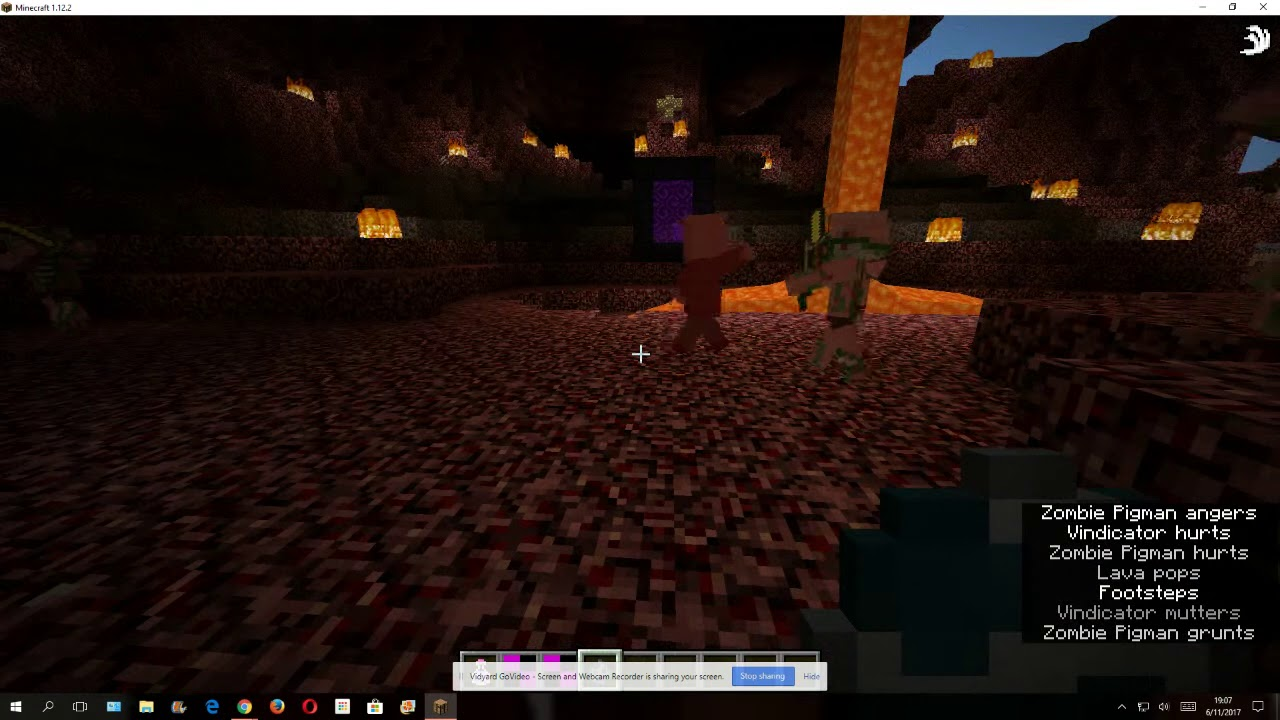 how to get zombie pigmen to stop attacking