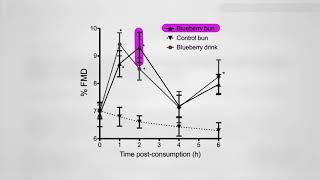 Prospěšnost borůvek pro funkci tepen