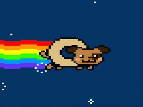 Nyan Dog - YouTube Nyan Dog