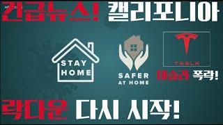 미국 긴급 뉴스! 캘리포니아 락다운 'Stay at Home' 행정명령 발동! 테슬라 오늘 폭락이유! - 7월 13일