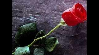 Amor eterno - Juan Gabriel