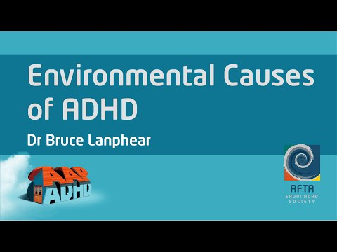 Environmental Causes of ADHD