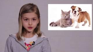 Ответственное отношение к собакам. Видеоурок для детей 7-11 лет.