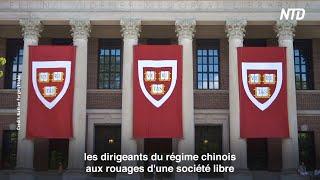 L'influence du régime chinois à Harvard