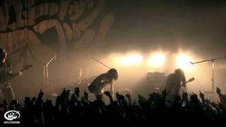 THE BACK HORN Live DVD 『マニアックヘブン ベストセレクション』 2011...