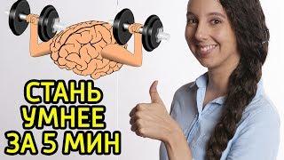 Как стать умнее быстро в любое время дня и ночи – Как стать умным за 5 минут и заставить мозг думать