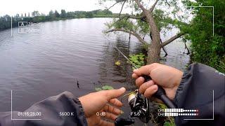 Мормышинг или микроджиг Что предпочтёт рыба на реке Дубна в конце июня