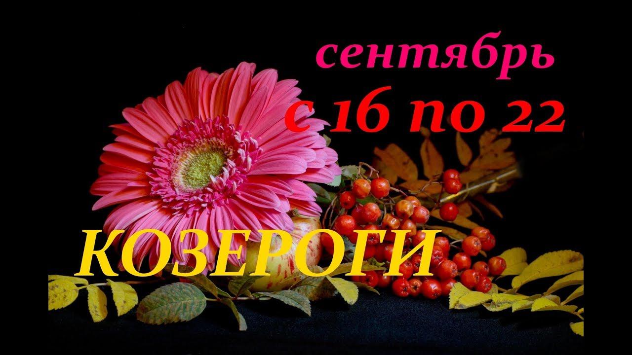 КОЗЕРОГИ. С 16 по 22 СЕНТЯБРЯ 2019 г. ПРОГНОЗ на НЕДЕЛЮ.