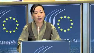 DIIR Kalon's talk at the EU's European Economic and Social Committee 18 April 2013