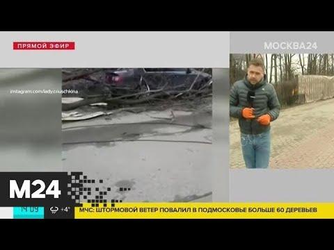 Видео: Ураганный ветер прервал работу Московской канатной дороги - Москва 24