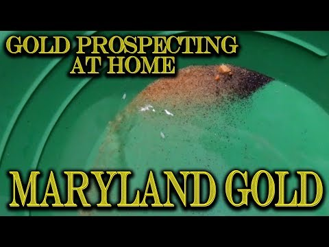 Gold Prospecting At Home #27 - The Forgotten Gold Paydirt From Maryland + Fan Art From Deowaxart!