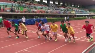 張振興伉儷書院 2014-15 社際陸運會 Day 1 精華