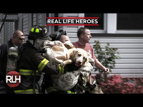 Real Life Heroes #48 2019 Good People Still Exist Compilation