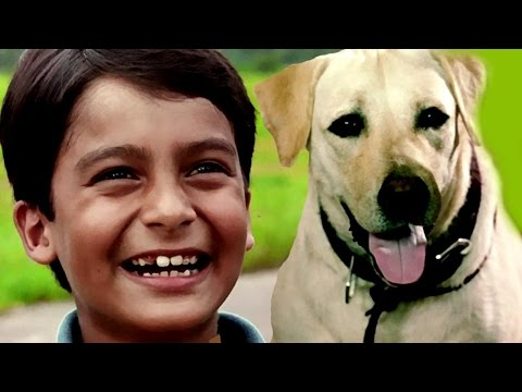Bollywood Full Movies – Kabhi Pass Kabhi Fail - कभी पास कभी फैल -New Hindi Dubbed Movies - Kids Film
