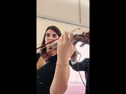 Hino da Ponte Preta violino