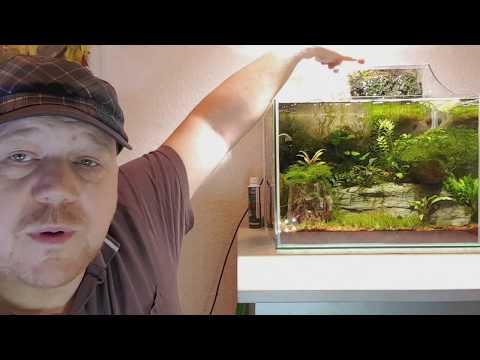 CO2 unsichtbar und hocheffizient ins Aquarium einbringen JBL ProFlora Unboxing Installat Test Review