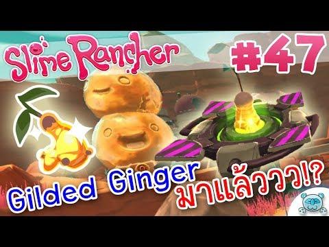หา 1 ได้ถึง 2!? Gilded Ginger มาแล้ววววว!? | Slime Rancher # 47 (Version 1.0.1)