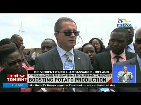 Nyandarua county to host Kenya's first potato processing plant