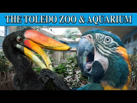 Zoo Tours Ep. 24: The Aviary at the Toledo Zoo