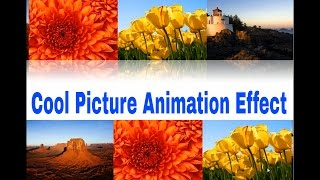 Picture Animation in Powerpoint (Professional Trick)