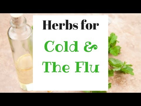 Herbal Flu Remedy + Jovanka Ciares