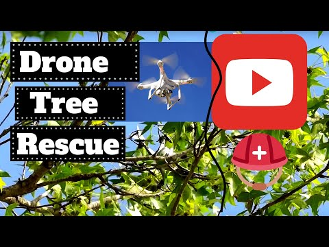 Drone Rescue - getting a drone out of a tree with another drone