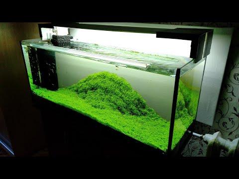 Интерьер аквариума своими руками