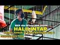 Aksi Halilintar Cendet Terbaik Garangan Cup  Milik Aba Wilson Shr Gresik  Mp3 - Mp4 Download